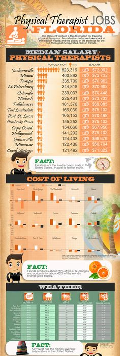 Physical Therapy Job Outlook Infographic  Infographics