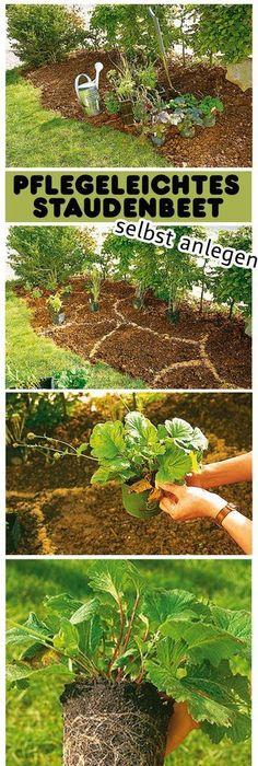 Von der Einöde zur grünen Oase Gardens, Garten and Garden ideas - pflegeleichter garten anlegen