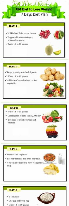 Gm diet chart find the gm diet plan pdf printable version for General motors diet pdf