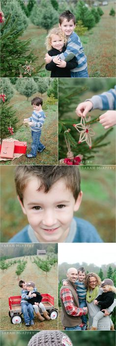 Knoxville family photographer christmas photo session ideas sarah mcaffry voted knoxvilles best photographer