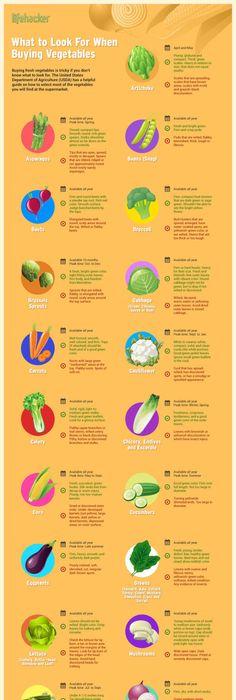 Nutricion dietas piramide alimenticia vegana caricaturas for Morey s fish
