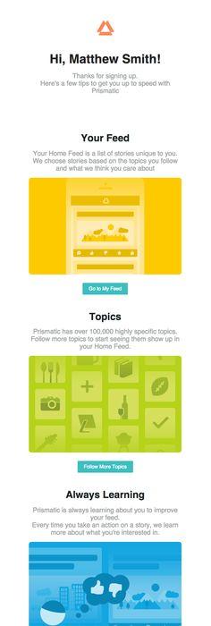 Nest Survey Email  Design Email  Digital Marketing
