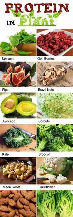 high protein foods list for vegetarians this is great even if you re not a vegetarian i ll eat every thing but goji berries and brazil nuts