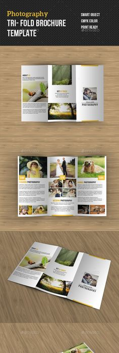Photography Square Trifold Brochure Template  Brochure Template
