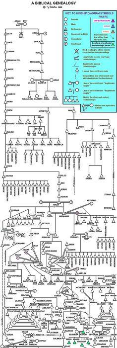 bible genealoy from adam family tree porie u0026 39 s picks