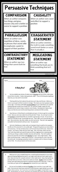 003 Persuasive Essays Examples And Samples Essay picture