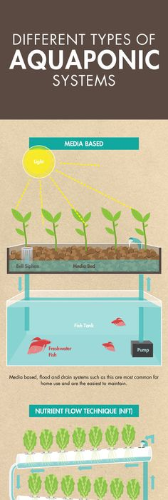27 tower garden ideas for vertical gardening aquaponics system follow these simple to follow instructions to build your very own ibc tote aquqponics this solutioingenieria Choice Image
