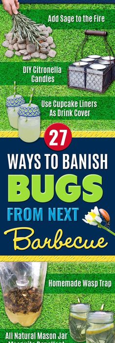 27 Ways To Banish Bugs From Next Barbecue. Citronella CandlesPest ControlMosquito  Spray For YardDiy ...