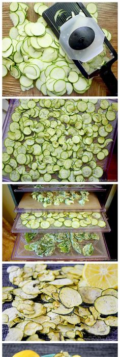No fat dehydrator zucchini chips zucchini chips courgettes and tasty forumfinder Images