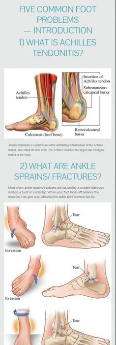 Ankle Anatomy And Biomechanics Massage Therapy Pinterest Ankle