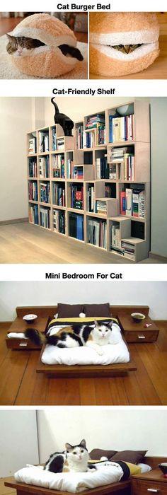 Ein paradies für katzen teil 1