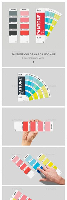 Fan Color Chart MockUp  Colour Chart Mockup And Logos