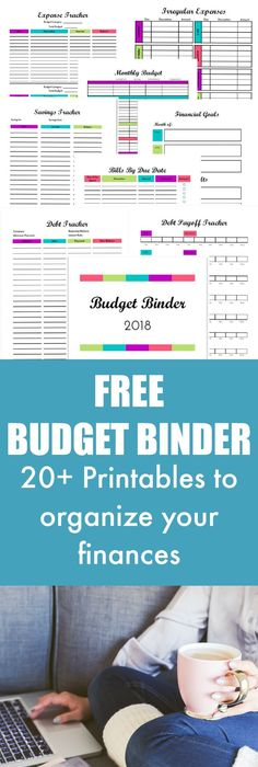 PRETTY Budget Planner Kit, Happy Planner Printable Budget, Cash - dave ramsey budget spreadsheet template