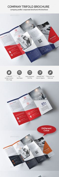 Business Trifold Brochure Design Bundle Ai Illustrator Brochures