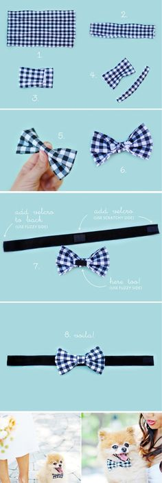 Diy No Sew Dog Bow Tie  Vanillapup  Bow    Dog Bow