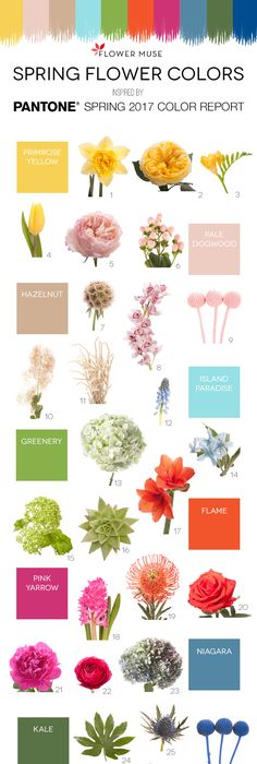 We share our picks of flowers as inspired by pantones spring 2015 we share our picks of flowers as inspired by pantones spring 2015 color report get ideas for your wedding or event with some spring flowers inspi mightylinksfo