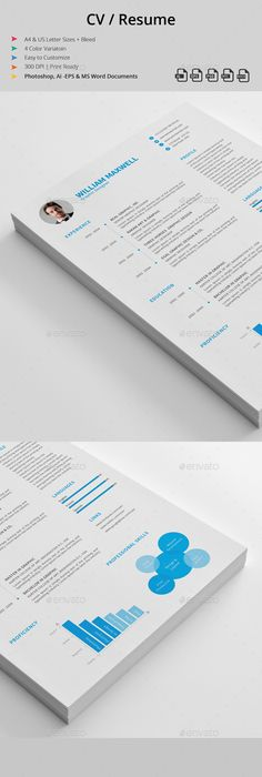 Templates For Resumes Word Interesting Resume  Ai Illustrator Template And Resume Cv