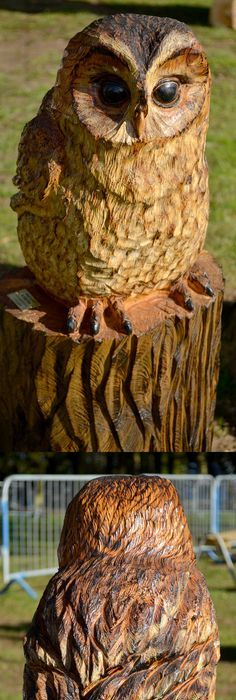 Four owls carving wood owl and woods