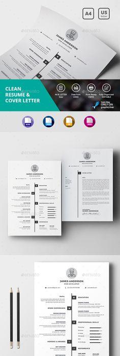Hicham Zinalabdin Resume  Infographic Resume