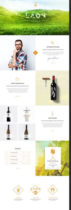 Brochure For Winery Or Wine Company VINIFERA Pinterest - What is invoice best online wine store