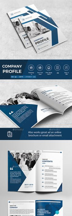 Example Of Company Profile Template Prepossessing The Company Profile  Company Profile Project Proposal And Cleaning .