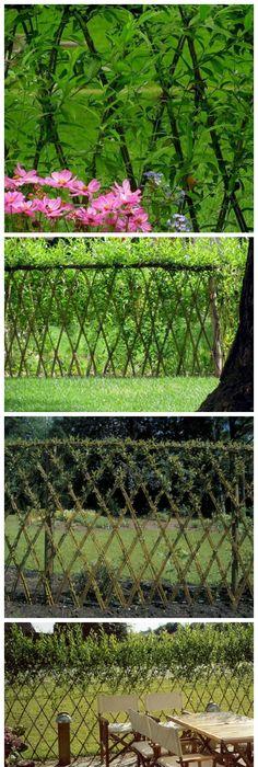 Amazing Examples Of Living Willow Fences. Living Willow FenceGarden  FencingGarden LandscapingLandscaping IdeasOutdoor ...