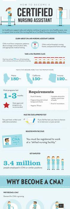 Free Sample Certified Nursing Assistant Resume Creative
