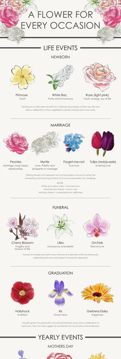 Birthday flowers by month birth flowers birth and shoulder for Flowers that mean life