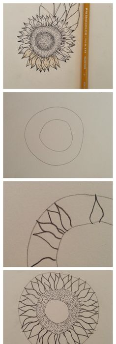 how to draw a swallow bird step by step