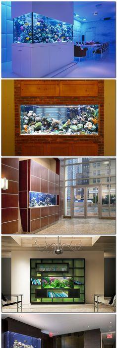 Kitchen Aquarium | MY NEXT HOUSE | Pinterest | Aquariums, Kitchens And Fish  Tanks