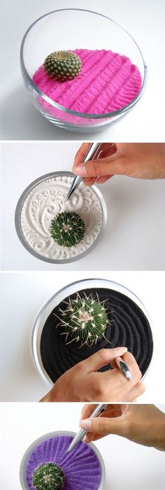 For your desk at work while your constantly on the phone colorful cacti zen gardens by wendiland cool idea so decor and also cool for when youre bored