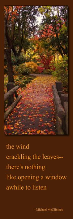 Tanka Poem: The Wind   By Michael McClintock