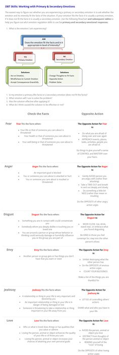 Image Result For Dbt Treatment Plan Template  Dbt Sources