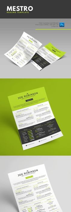 Top  Best Free Resume Templates Psd  Ai   Colorlib