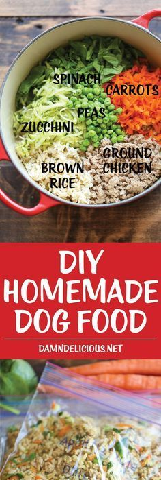 10 home made dog food ideas homemade dog food dog food recipes diy homemade dog food keep your dog healthy and fit with this easy peasy homemade forumfinder Choice Image