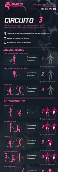 Circuito Quema Grasa Mujeres : Musculacion para principiantes dieta y rutina de