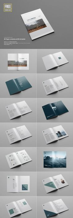 A minimal 38 pages company profile template; perfect for small and