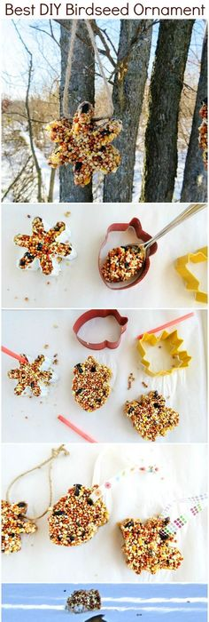 Birdseed ornaments recipe ornament shapes and easy how to make the best birdseed ornaments crafts for kidsdiy solutioingenieria Image collections