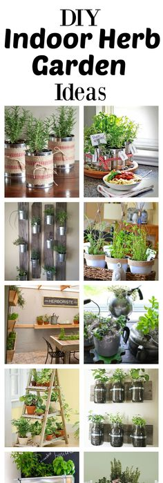 7 container gardens fit for even the smallest spaces herbs what could be more convenient than being able to clip herbs to cook with right in your own kitchen check out these inspiring diy indoor herb garden ideas solutioingenieria Choice Image