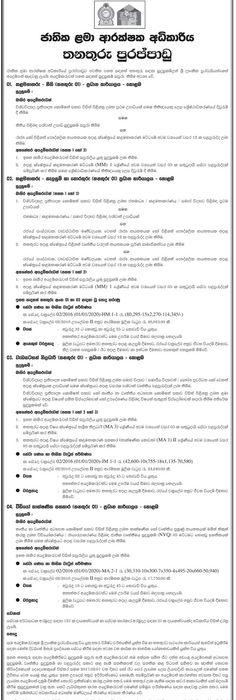 Sri Lankan Government Job Vacancies At Sri Lanka Cricket Ministry