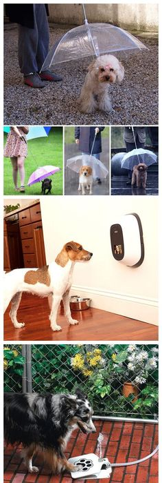 Love Your Pet: Creative Products For Doggies! For More Inspirationsu2026