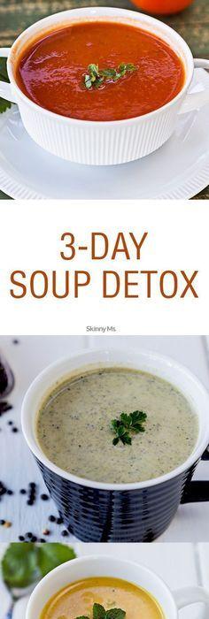 Download the vitamix cookbook by jodi berg pdf ebook kindle the 3 day soup detox forumfinder Images