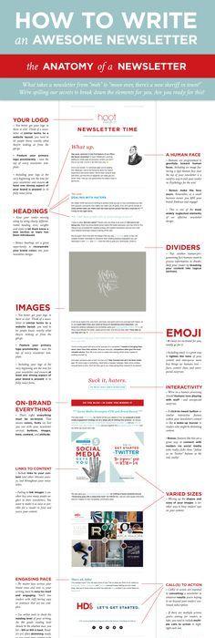 3 Free NEWSLETTER TEMPLATES - EDITABLE - | class news | Pinterest ...