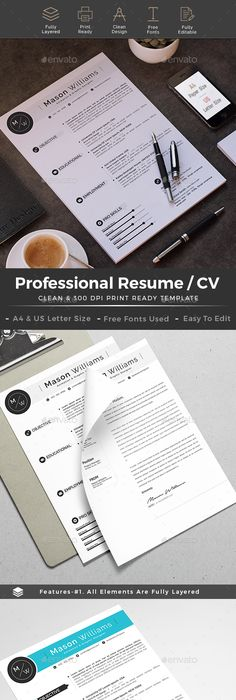 Cv Formats Simple Professional Resume  Professional Resume Resume Cv And Simple .