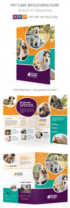 Pet Care Flyer  Magazine Ad  Magazine Ads Pet Care And