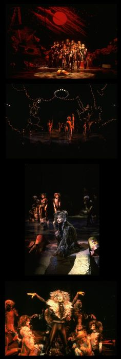 Cats the Musical 7306jpg Cat, Broadway and Musical theatre - best of lyrics invitation to the jellicle ball