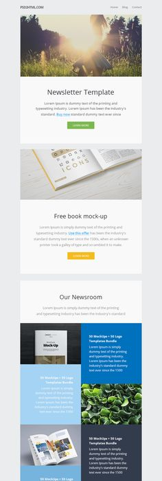 Email Newsletter Templates Bundle  Newsletter Templates Email
