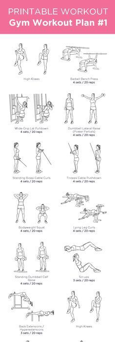 Empresa russa processa Gracyanne Barbosa Muscle girls, Female - fitness plan template