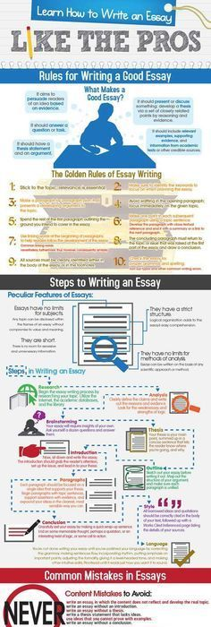 The Ultimate BeginnerS Guide To Writing Essays Infographic
