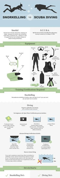 Scuba Diving Padi Certification Levels - If you would reather be ...